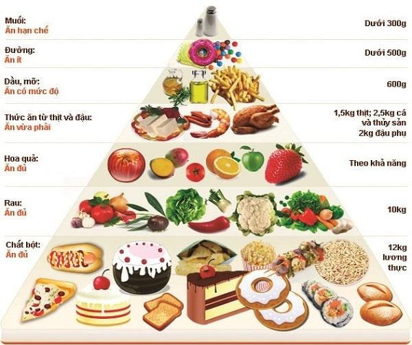 Tháp dinh dưỡng dành cho người già