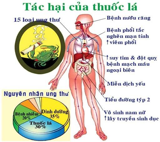 Tác hại của thuốc lá đến cơ thể con người