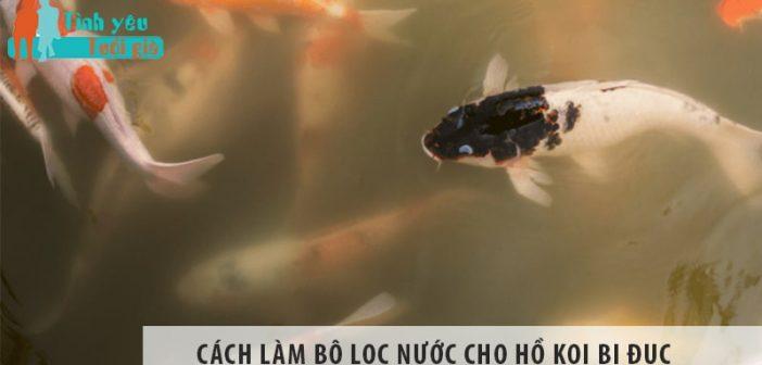 Cách làm bộ lọc nước cho hồ Koi bị đục